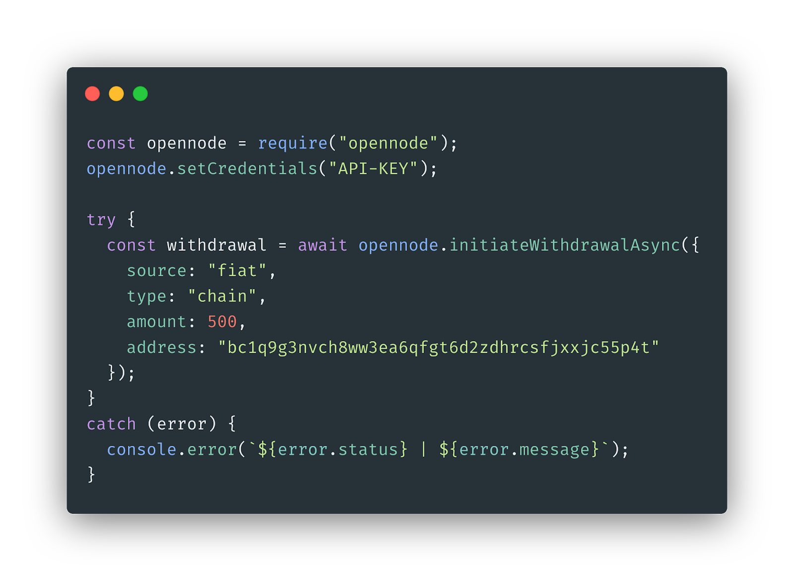 Image of the OpenNode API for payouts